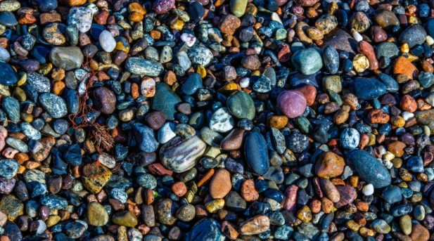 Roci si fosile