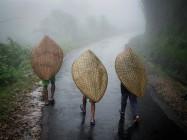Cel mai ploios loc de pe Pământ este în India - Mawsynram