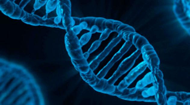 Curiozități din biologie si genetică