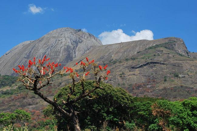 Muntele Namuli, Mozambic