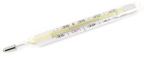 Istoria termometrului