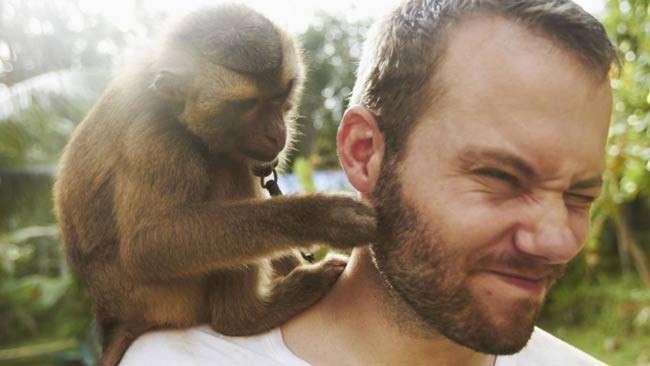 Alban Lemasson etologul care demonstreaza ca si animalele sunt buni oratori